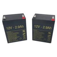 Baterías para Grúa eléctrica Birdie de 2.9Ah - 12V (PAR)