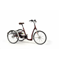 Triciclo para adultos 'Lagoon'