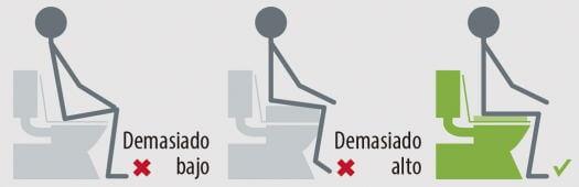 Elevador de wc economico