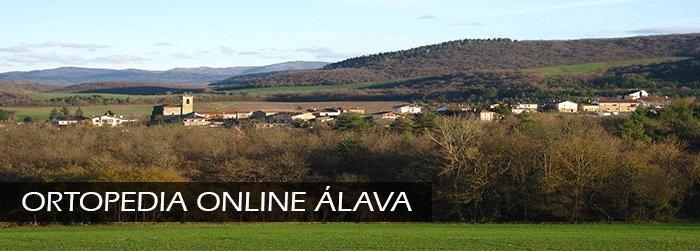 Ortopedia Online en Álava